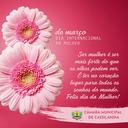 08 de Março, dia internacional da Mulher! Parabéns a todas as Mulheres.